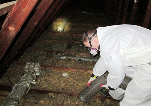 Attic Insulation Cleanup MD
